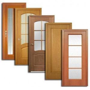 Двери, дверные блоки Шацка