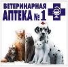 Ветеринарные аптеки в Шацке
